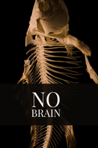 Couverture de No Brain