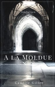 Fanfiction Harry Potter A la Moldue par Camille Gillet