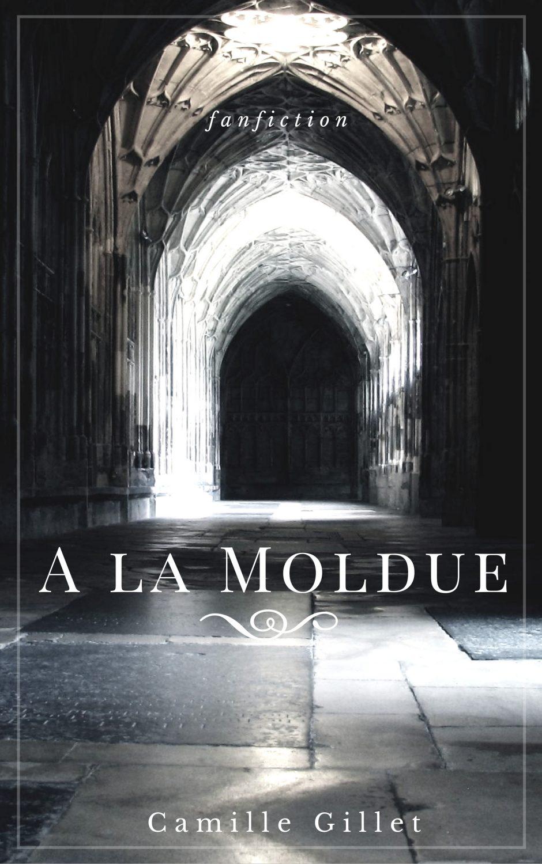 Fanfiction Harry Potter A la Moldue par Camille Gillet